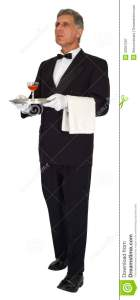 butler-head-waiter-server-luxury-standing-isolated-carrying-tray-man-has-air-class-wealth-male-32561297
