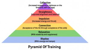 6_pyramid_training-300x169